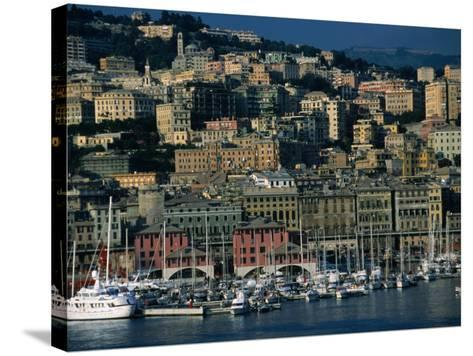 City Above Port and Marina, Genova, Liguria, Italy-Dallas Stribley-Stretched Canvas Print