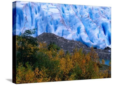 Autumn Colours and Icefall at Briksdalsbreen Glacier, Finnmark, Norway-Anders Blomqvist-Stretched Canvas Print