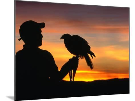 Man Holding a Falcon at Sunset, Perquin, El Salvador-Alfredo Maiquez-Mounted Photographic Print