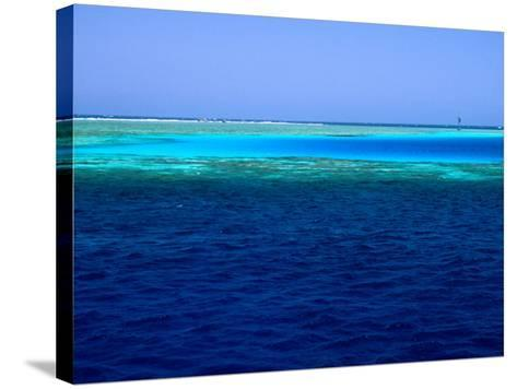 Abu Nuhas (Ships' Graveyard) Dive Site in Red Sea, Egypt-Jean-Bernard Carillet-Stretched Canvas Print