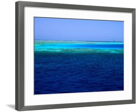 Abu Nuhas (Ships' Graveyard) Dive Site in Red Sea, Egypt-Jean-Bernard Carillet-Framed Art Print