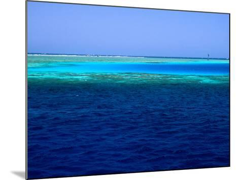 Abu Nuhas (Ships' Graveyard) Dive Site in Red Sea, Egypt-Jean-Bernard Carillet-Mounted Photographic Print