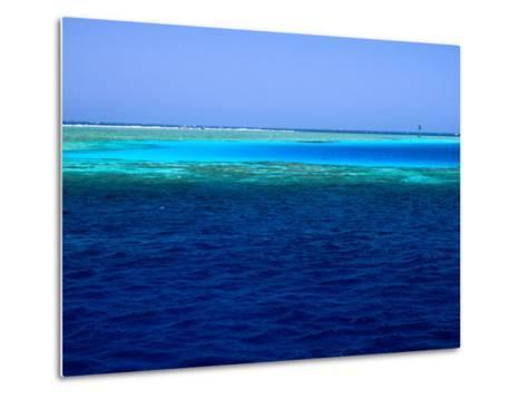 Abu Nuhas (Ships' Graveyard) Dive Site in Red Sea, Egypt-Jean-Bernard Carillet-Metal Print
