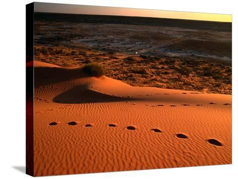 """On Top of the """"Big Red"""" Sand Dune in the Simpson Desert, Birdsville,Queensland, Australia-John Hay-Stretched Canvas Print"""