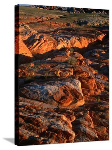 Valley of Fire State Park, Nevada's Oldest State Park, Valley of Fire State Park, Nevada, USA-Carol Polich-Stretched Canvas Print
