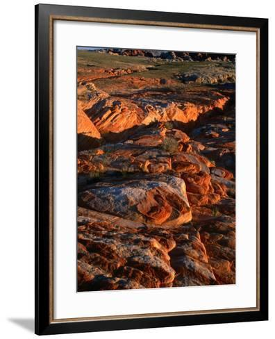 Valley of Fire State Park, Nevada's Oldest State Park, Valley of Fire State Park, Nevada, USA-Carol Polich-Framed Art Print