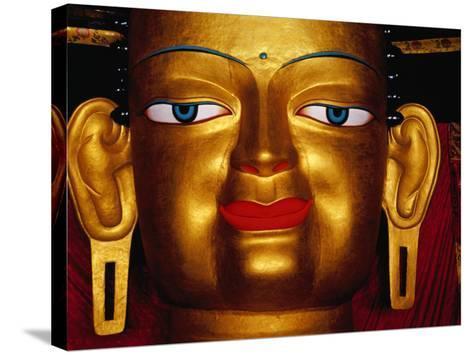 Shakyamuni Buddha Statue at Shey Monastery, Ladakh, India-Richard I'Anson-Stretched Canvas Print