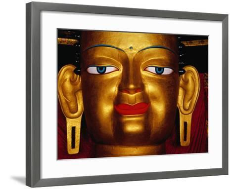 Shakyamuni Buddha Statue at Shey Monastery, Ladakh, India-Richard I'Anson-Framed Art Print