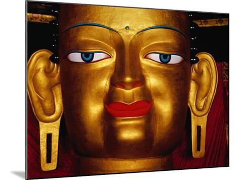Shakyamuni Buddha Statue at Shey Monastery, Ladakh, India-Richard I'Anson-Mounted Photographic Print
