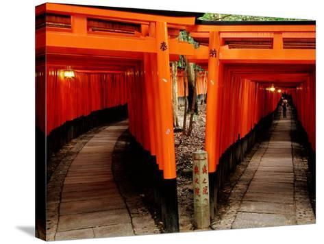 Torri Gates Lining Mountain Pathways at Fushimi-Inari, Kyoto, Japan-Frank Carter-Stretched Canvas Print