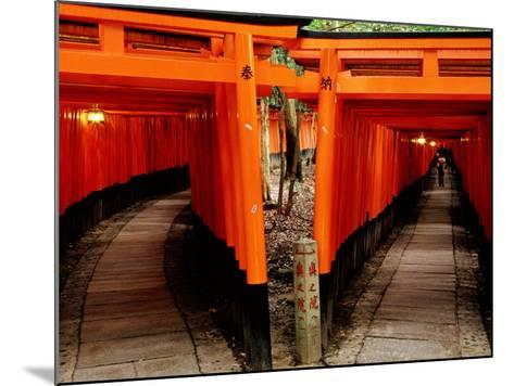 Torri Gates Lining Mountain Pathways at Fushimi-Inari, Kyoto, Japan-Frank Carter-Mounted Photographic Print