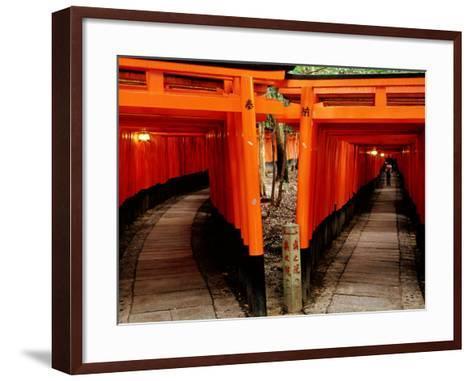 Torri Gates Lining Mountain Pathways at Fushimi-Inari, Kyoto, Japan-Frank Carter-Framed Art Print
