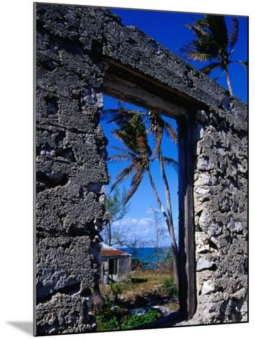 The View from an Abandoned Old Settlement Building by the Shore, Cat Island, Bahamas-Greg Johnston-Mounted Photographic Print