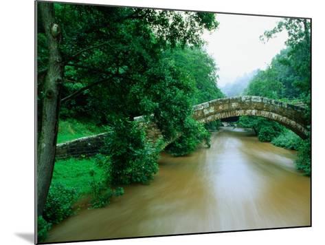 Beggars Bridge Over River Esk in North York Moors National Park, England-Mark Daffey-Mounted Photographic Print