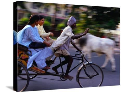Young Women on Cycle Rickshaw, Lucknow, Uttar Pradesh, India-Greg Elms-Stretched Canvas Print