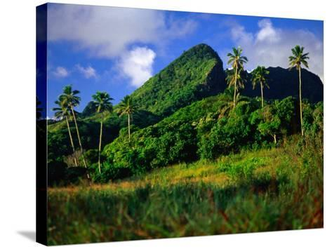 Palm Trees and Dense Jungle Peaks, Rarotonga, Southern Group, Cook Islands-Peter Hendrie-Stretched Canvas Print