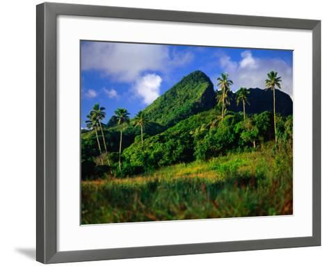 Palm Trees and Dense Jungle Peaks, Rarotonga, Southern Group, Cook Islands-Peter Hendrie-Framed Art Print