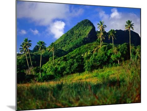 Palm Trees and Dense Jungle Peaks, Rarotonga, Southern Group, Cook Islands-Peter Hendrie-Mounted Photographic Print