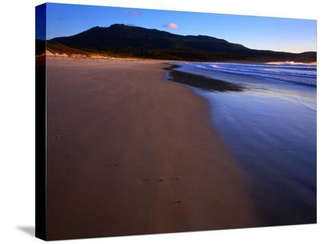 Shoreline Maria Island National Park, Tasmania, Australia-Rob Blakers-Stretched Canvas Print