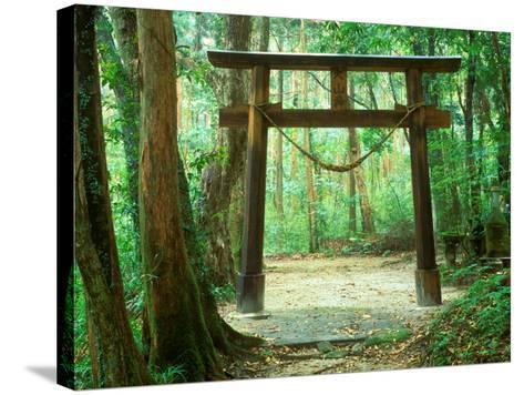 Mountain Shrine, Yakushima, Kagoshima, Japan-Rob Tilley-Stretched Canvas Print