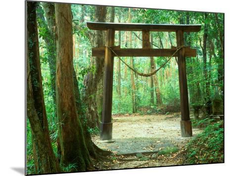 Mountain Shrine, Yakushima, Kagoshima, Japan-Rob Tilley-Mounted Photographic Print