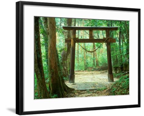Mountain Shrine, Yakushima, Kagoshima, Japan-Rob Tilley-Framed Art Print
