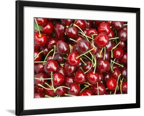 Cherries, Ripponvale, near Cromwell, Central Otago, South Island, New Zealand-David Wall-Framed Art Print