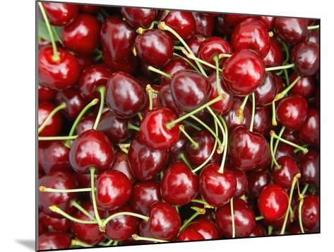 Cherries, Ripponvale, near Cromwell, Central Otago, South Island, New Zealand-David Wall-Mounted Photographic Print