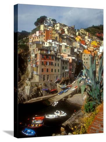 Town View, Rio Maggiore, Cinque Terre, Italy-Alison Jones-Stretched Canvas Print