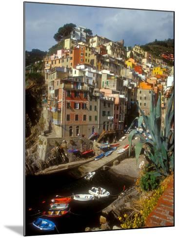 Town View, Rio Maggiore, Cinque Terre, Italy-Alison Jones-Mounted Photographic Print