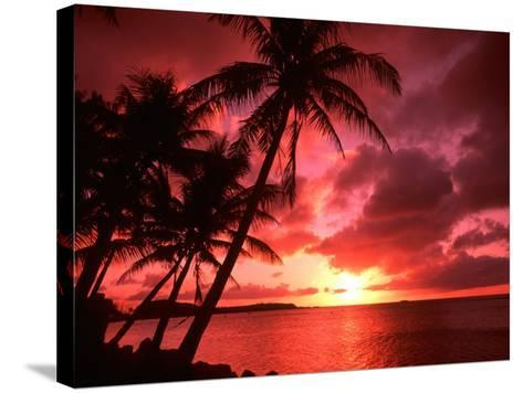 Palms And Sunset at Tumon Bay, Guam-Bill Bachmann-Stretched Canvas Print