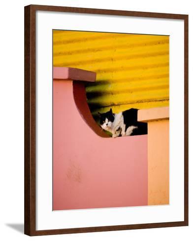Caminito Avenue, La Boca District, Buenos Aires, Argentina-Stuart Westmoreland-Framed Art Print