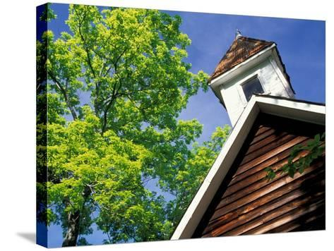 Old School House, Palisades Park, Alabama, USA-William Sutton-Stretched Canvas Print