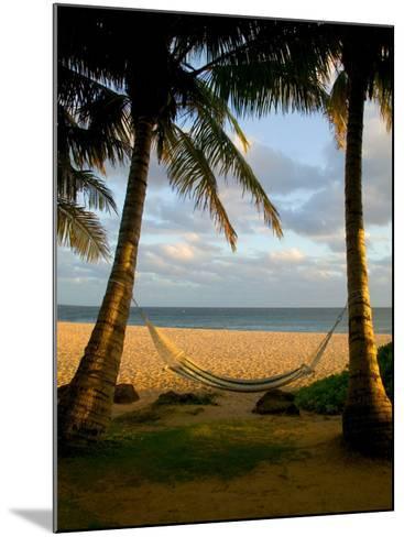 Ship Wreck Beach and Hammock, Kauai, Hawaii, USA-Terry Eggers-Mounted Photographic Print