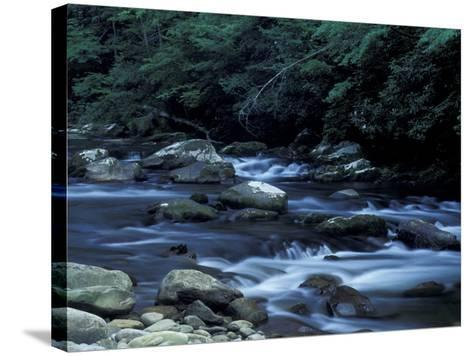 The Little River, Great Smoky Mountains National Park, Tennessee, USA-William Sutton-Stretched Canvas Print