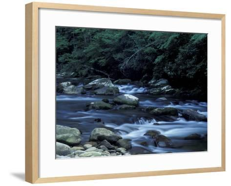 The Little River, Great Smoky Mountains National Park, Tennessee, USA-William Sutton-Framed Art Print