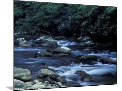 The Little River, Great Smoky Mountains National Park, Tennessee, USA-William Sutton-Mounted Photographic Print
