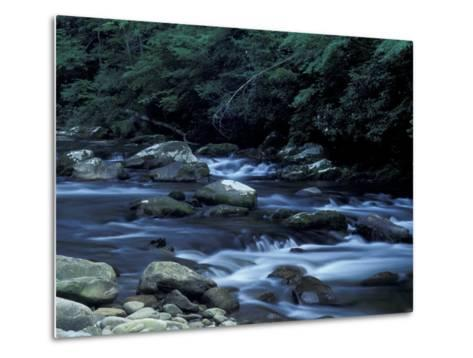 The Little River, Great Smoky Mountains National Park, Tennessee, USA-William Sutton-Metal Print