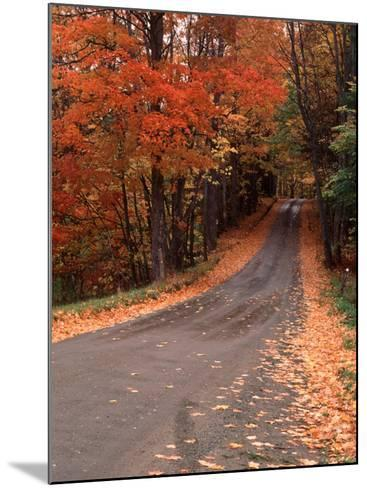 Country Road in Autumn, Vermont, USA-Charles Sleicher-Mounted Photographic Print
