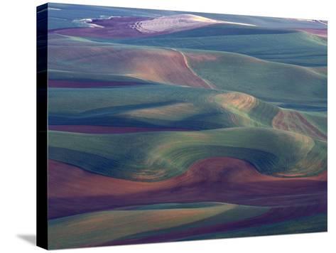Steptoe Butte State Park, Washington, USA,-Gavriel Jecan-Stretched Canvas Print