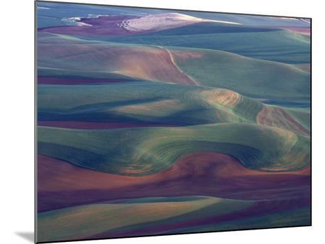 Steptoe Butte State Park, Washington, USA,-Gavriel Jecan-Mounted Photographic Print