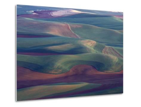Steptoe Butte State Park, Washington, USA,-Gavriel Jecan-Metal Print