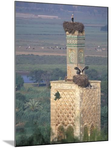 Tower With Birds and Bird Nests, Morocco-John & Lisa Merrill-Mounted Photographic Print