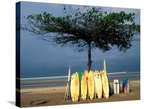 Surfboards Lean Against Lone Tree on Beach in Kuta, Bali, Indonesia-Paul Souders-Stretched Canvas Print