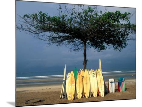 Surfboards Lean Against Lone Tree on Beach in Kuta, Bali, Indonesia-Paul Souders-Mounted Photographic Print
