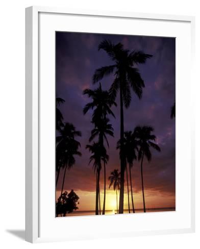 Palm Trees at Sunset, Puerto Rico-Greg Johnston-Framed Art Print