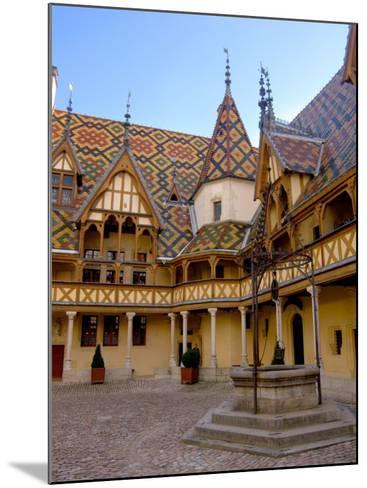 Well in Hotel-Dieu Courtyard, Beaune, Burgundy, France-Lisa S^ Engelbrecht-Mounted Photographic Print