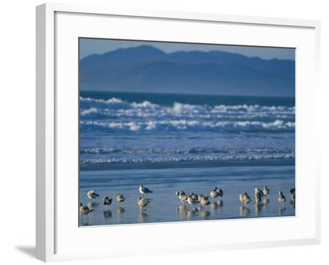 Pismo Beach, California, USA-Nik Wheeler-Framed Art Print