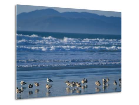 Pismo Beach, California, USA-Nik Wheeler-Metal Print