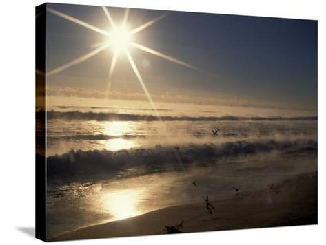 Ocean on Winter Morning, Florida, USA-Nik Wheeler-Stretched Canvas Print